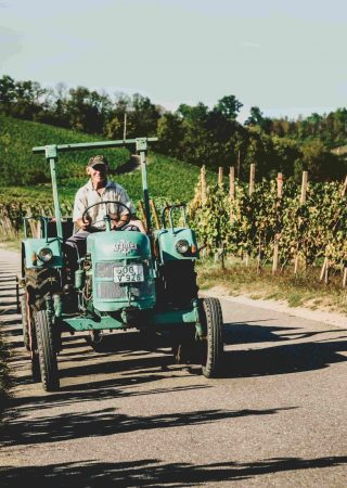 Traktor (1)_Farblook-matt